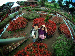 Taman Begonia, tempat wisata romantis di Bandung