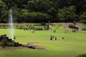trek jogging di Bogor, Kebun Raya Bogor