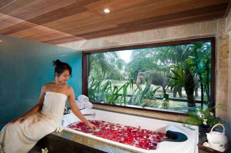 tempat spa di Bali, Elephant Safari Park Lodge, Seputar Kota