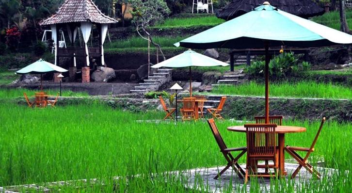 restoran romantis di Malang, Paddy City Resort, Seputar Kota