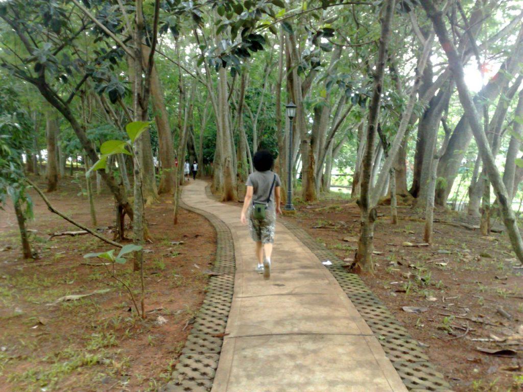 taman kota di Tangerang, Taman Kota 1 BSD, Seputar Kota
